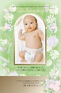 出産報告はがき テンプレート型番:T1-042