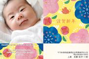出産報告はがき テンプレート型番:T1-050