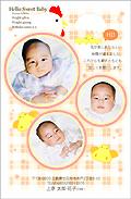 出産報告はがき テンプレート型番:T3-011