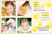 出産報告はがき テンプレート型番:T4-009